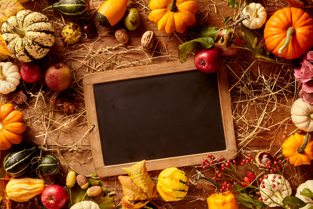 Top down view on blank black chalkboard bordered by gourds of various sizes and colors Stock Photo