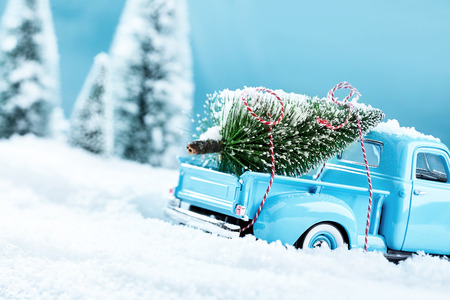 x mas: X mas tree truck in wintery landscape