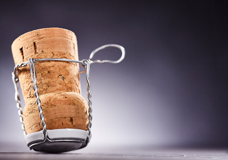 Close up side view on upside down cork with metal wire untied. Includes copy space over white to black gradient. Stock Photo