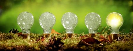 에코 친화적 인 전원 및 에너지의 개념에 오른쪽 글로우 그냥 글로브와 함께 흐린 녹색 배경 위에 모스의 침대에 전구 서 행의 파노라마 배너 스톡 콘텐츠