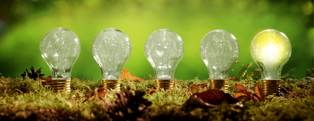 Panorama banner with a row of light bulbs standing in a bed of moss over a blurred green background with just the globe on the right glower in a concept of eco friendly power and energy