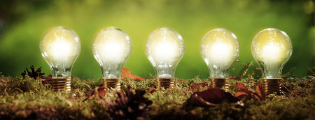 Panorama banner with five glowing light bulbs positioned in moss over a blurred green outdoor background in an ecological and environmental concept Archivio Fotografico