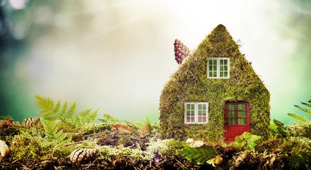 Concept de maison écologique avec maison modèle couverte de mousse à l'extérieur dans un jardin avec copie espace parmi les fougères vertes Banque d'images - 82316693