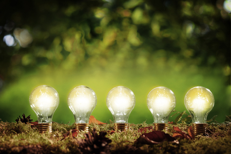 Five glowing eco friendly efficient light bulbs standing in a row in moss over a green outdoors background with copy space above in an environmental concept 版權商用圖片
