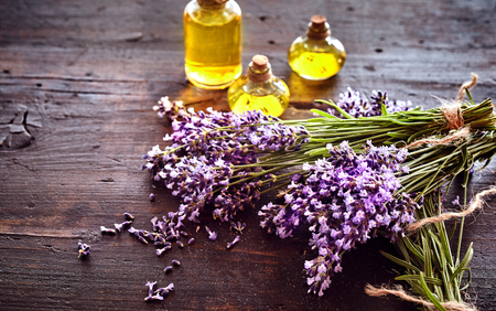 Bunches of fresh lavender with three small bottles of essential oil or extract for aromatherapy or alternative medicine lying on rustic wood with copy space Stockfoto