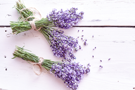 Bunches of fresh purple lavender with scattered small flowers on a painted white wood background with copy space viewed from above