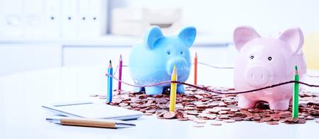 Deux cigognes parmi le tas de pièces de monnaie derrière des clôtures de crayons de couleur Banque d'images - 82621820