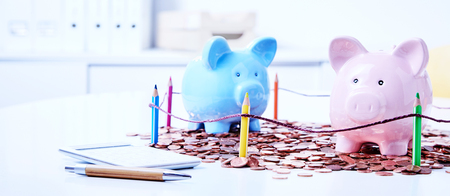 Two piggy banks among heap of coins behind fencing of colored pencils Reklamní fotografie - 82621820
