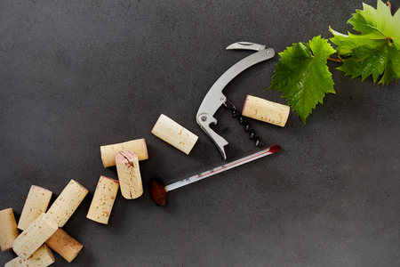 Wine making equipment including corks, thermometer, bottle opener and green grape leaves isolated on a dark background with copy space. Stock Photo