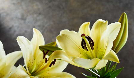 Bunch of fresh fragrant yellow day lilies over a slate background with copy space for wellness, spa or gift concepts for a loved one Stock Photo - 83301038