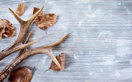 Hirschgeweihe mit trockenen Blättern auf hellem hölzernem Hintergrund Standard-Bild - 83301065