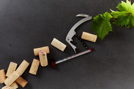 와인 코르크, 온도계, 오프너 및 녹색 포도 복사본 공간을 가진 어두운 배경에 고립 된 잎을 포함 한 장비를 만들기.