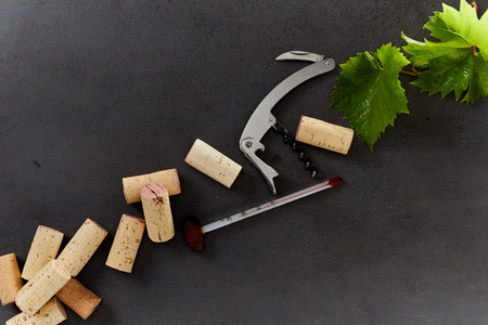 Wine making equipment including corks, thermometer, bottle opener and green grape leaves isolated on a dark background with copy space. Zdjęcie Seryjne