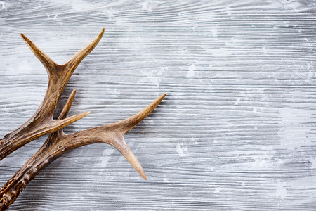 Deer antlers against wooden background with copy space 版權商用圖片