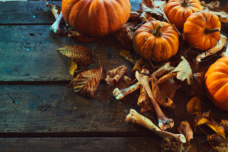 Halloween concept with bones among pumpkins with autumn dry leaves against dark wooden background Stock Photo