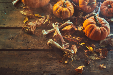 Halloween horror background with bones and dried leaves scattered between fresh pumpkins on old rutsic wooden boards with copy space