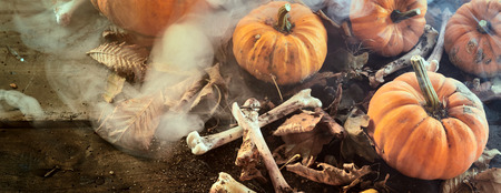 Halloween banner with pumpkins and dried bones with scattered autumn leaves in a smoky misty atmosphere viewed close up high angle full frame Reklamní fotografie
