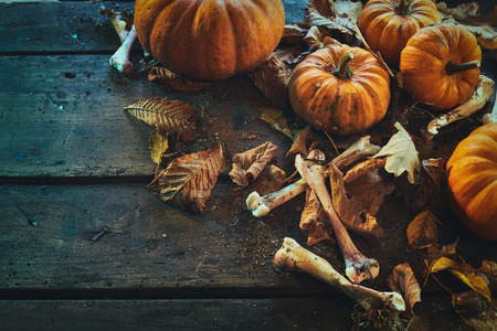 Halloween theme of bones among pumpkins with leaves against wooden background