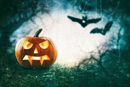 Halloween theme of spooky jack o lantern against flying bats Reklamní fotografie - 88001350