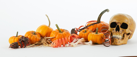 Halloween horror panorama with copy space with an old human skull and dried bones amongst pumpkins decorated with streamers over white Stock Photo - 88622892