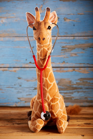 Giraffe toy with puppetry stethoscope viewed in close-up from the front against blue painted wooden wall. Pediatrician office concept
