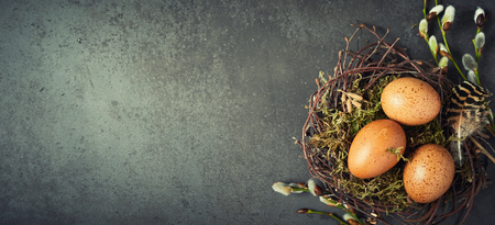 Natural rustic Easter panoramic banner with copy space and a nest of twigs and green moss filled with speckled brown hens eggs to the side Stock Photo - 95913365