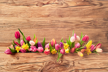 Arrangement of colorful fresh spring flowers with tulips and daffodils for Easter over a textured wood background with attractive woodgrain and copy space Stock Photo