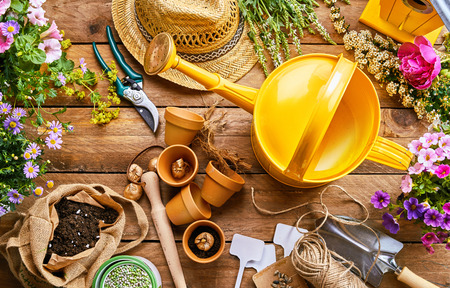 Assortment of garden tools and colorful spring plants for potting into little terracotta flowerpots on a rustic wood background viewed from above Stok Fotoğraf - 96435687