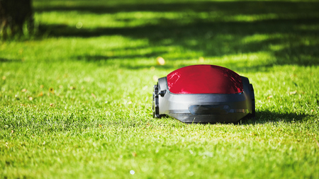 Robotic lawn mower on summer meadow in the garden with copy space