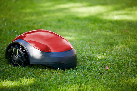 Robot lawn mower on summer meadow in the garden with copy space Stock Photo