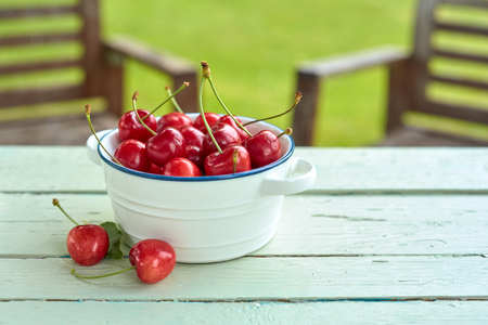 Dish of freshly harvested red sweet cherries on a rustic white garden table with green lawn and chairs in summer Stock Photo