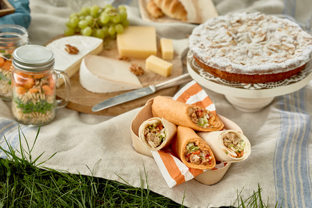 Tasty country picnic with kebabs or wraps, cake for dessert, fruit, cheese and pickles on a tablecloth on green grass Stock Photo