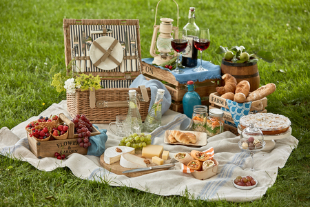 Picnic food set with beverages on blanket against green grass in garden