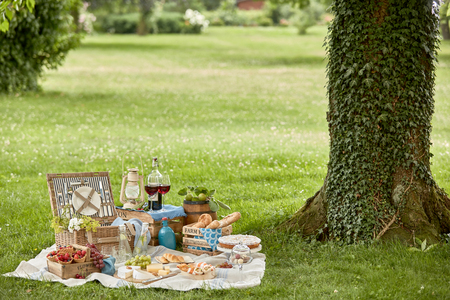 Healthy outdoor living with a tasty picnic hamper lunch arranged on the grass on a rug in the park with assorted fresh fruit, bread, cheese, wraps, dessert, red wine and chilled infused water