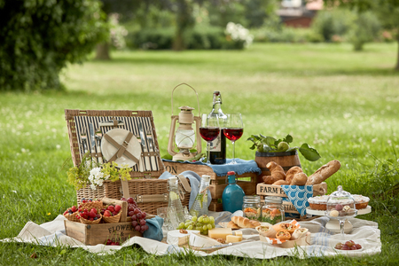 Delicious farm fresh country picnic arranged in the shade of a tree in a park with a selection of fruit, cheese, pastries, vegetable and meat wraps , pickles, wine and chilled infused water