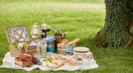 Blanket with picnic food set on green grass under tree in park Standard-Bild
