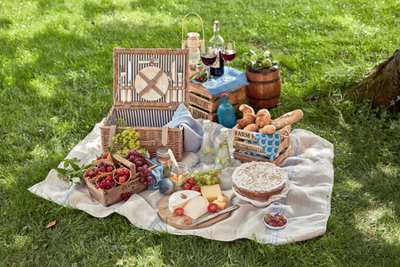 Delicious picnic spread in a park with a large selection of different food, cold infused water and wine spread on a rug in the shade of a tree on green grass