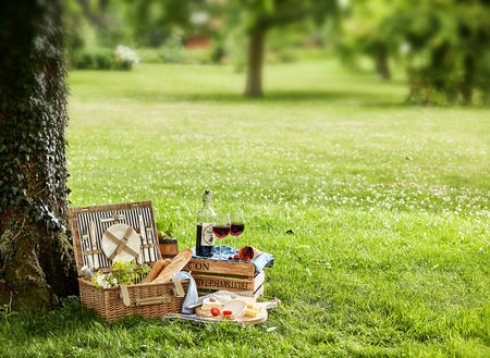 Picnic hamper under tree in green field with bottle and glasses of wine. Stock Photo