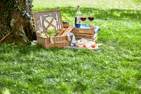 Romantic picnic for two with red wine, bread in a wicker hamper and cheeseboard on lush green grass under a tree