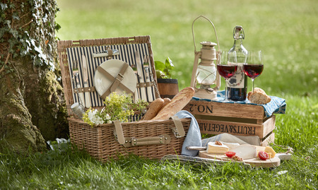 Picnic basket with food and glasses of wine on grass under tree