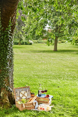 Summertime picnic for two in a lush green park with a vintage style wicker picnic hamper, French baguettes a selection of cheese on a platter and bottle and glasses of red wine with fresh berries