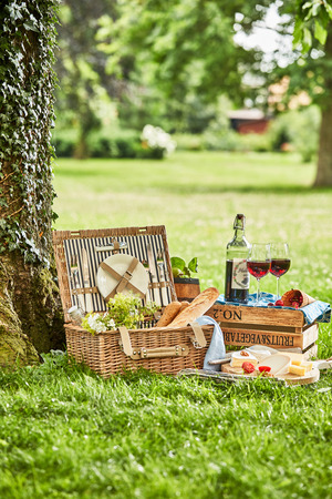 Romantic picnic for two outdoors in a spring park with open hamper, bread, cheese and red wine neatly arranged under a tree with copy space