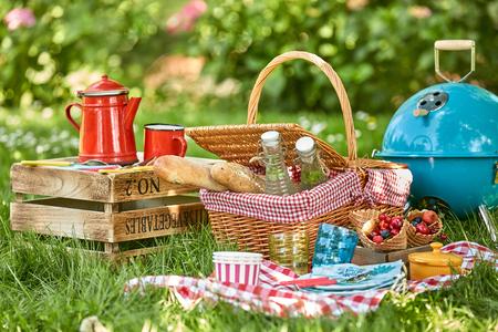 Picnic hamper and BBQ in the shade of a tree in a lush green garden with fresh berries, bread, soft drinks and colorful red enamel coffee can on a checkered tablecloth