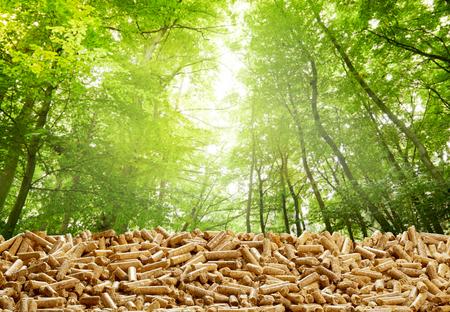 Strato di pellet di legno organico in una foresta verde con il bagliore del sole attraverso gli alberi in un concetto di energia rinnovabile ecologica da risorse naturali