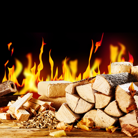 Assorted biofuels in front of a blazing fire with split logs, chopped kindling, wood pellets and bricks and logs of compressed sawdust Stockfoto - 108238267