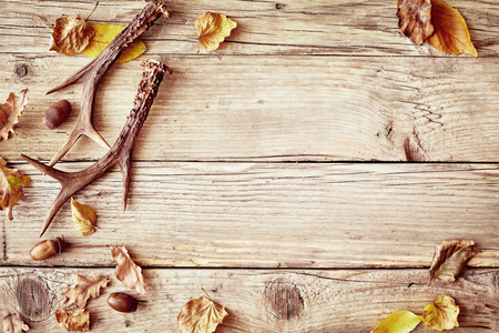 Old rustic wood background with antlers and a border of colorful yellow and withered autumn leaves around central copy space 스톡 콘텐츠