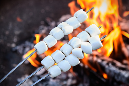 Fresh marshmallows threaded on three skewers for roasting held in front of a burning wood fire with flames