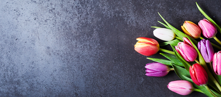 Bouquet of fresh colorful tulip flowers sitting on dark surface background with copy space