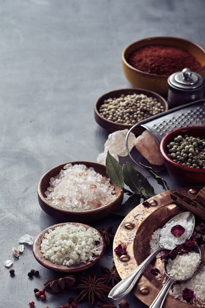 Assorted mixed global salts in a still life with black Hawaiian lava salt, Indus, Fleur de sel, Flor da Sal, Geurande salt, rock salt and sea salt with aromatic dried spice on grey with copy space
