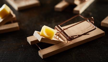 Ratonera de madera de resorte amartillado cargada con un trozo de queso en la barra de madera. Visto de cerca entre muchos, sobre una superficie oscura.